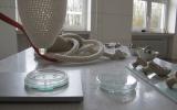 Tränenmelkmaschine-2011-Tisch-Detail-2